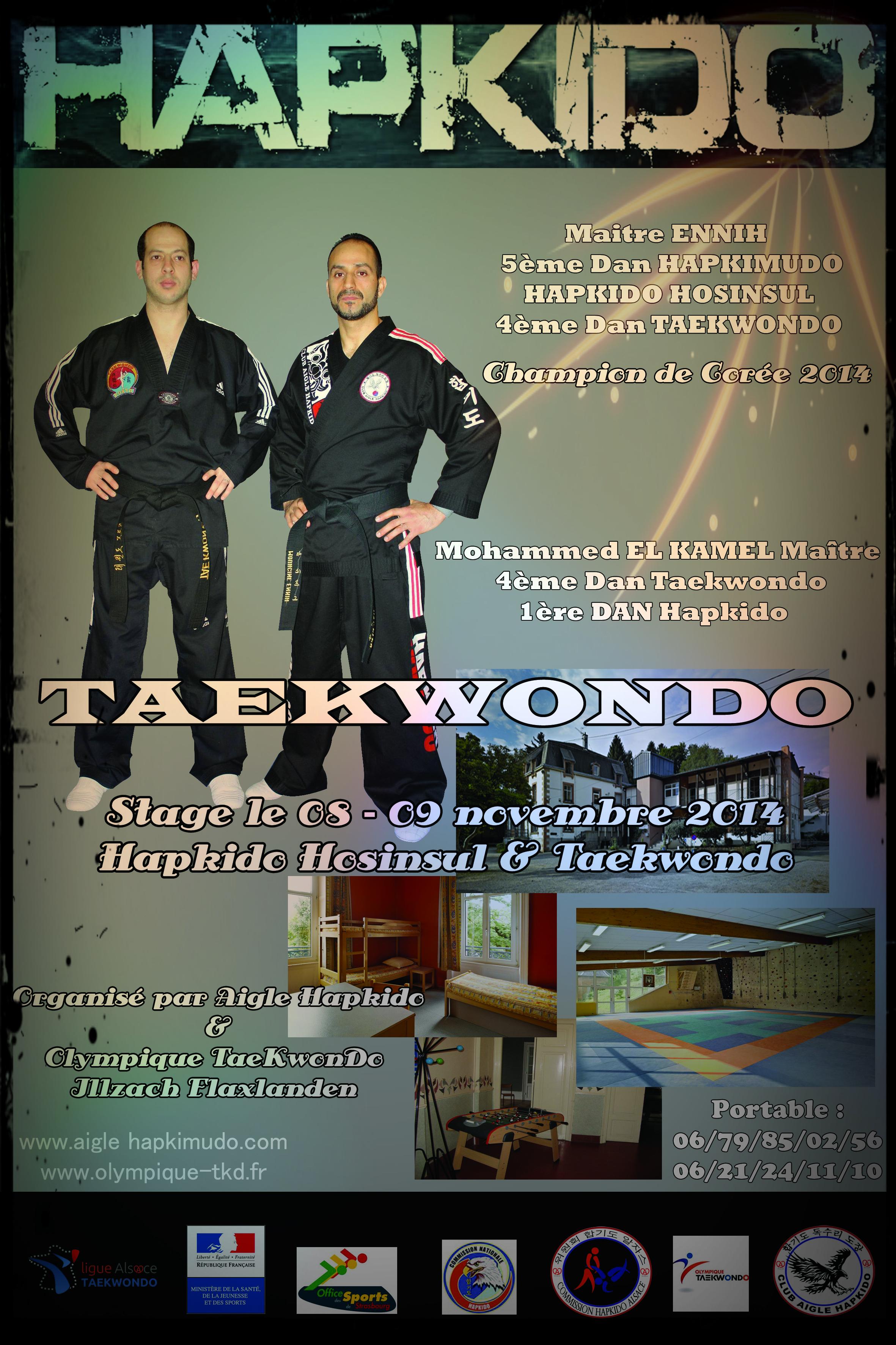 affiche cluc aigle hapkido2014